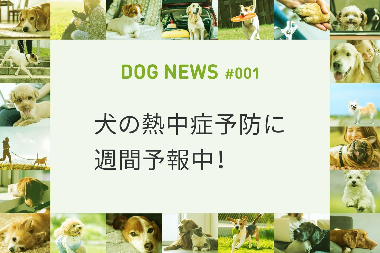 犬の熱中症が気になるシーズンに向けて今年も予報配信!