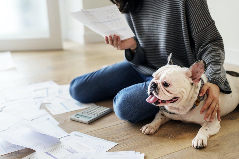 """愛犬の""""もしも""""に備えてペット保険は入るべき?選び方のポイントは"""