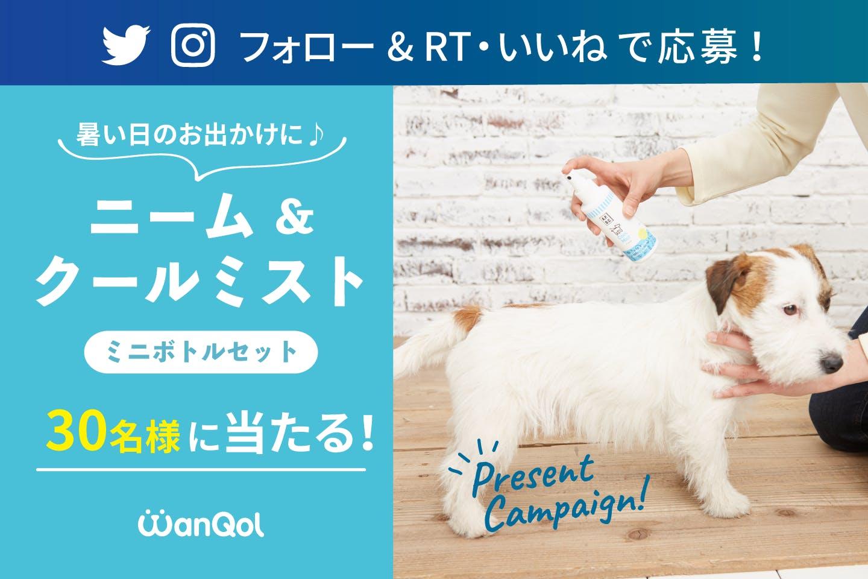 【プレゼントキャンペーン!】Twitter or Instagramでニーム&クールミスト ミニボトルセットをゲットしよう!