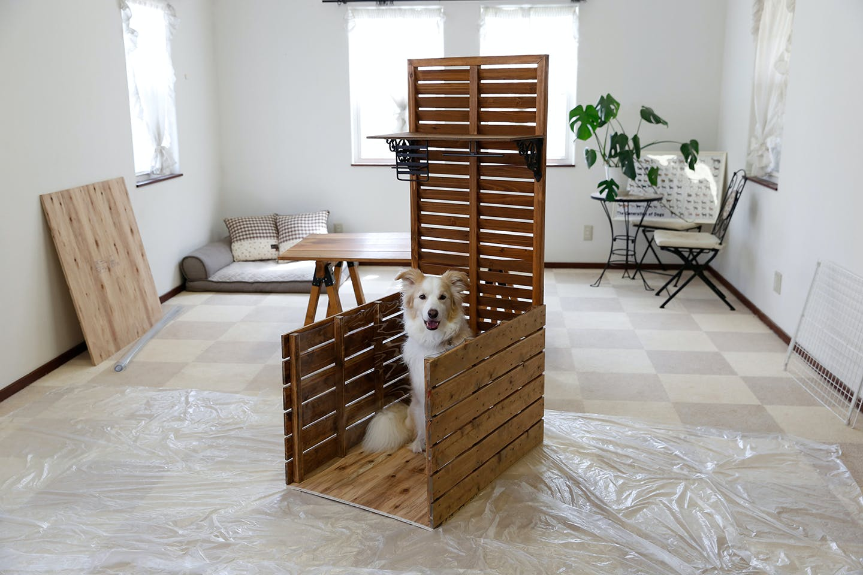 Dog & DIY 「インテリアドッグトイレ」を作ろう!【後編】~組み立て~