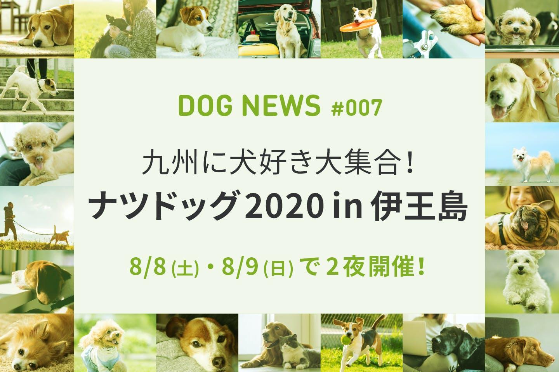 犬好き大集合!真夏のナイト・ドッグフェス「ナツドッグ2020 in 伊王島」開催!