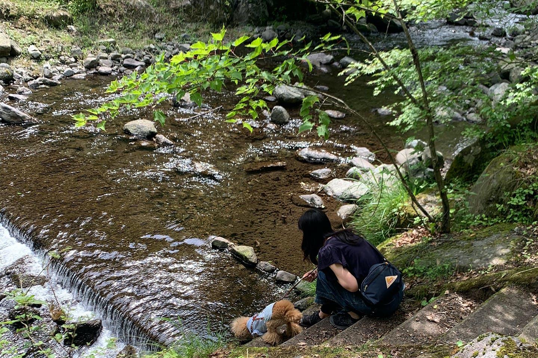 暑かったみたいで、ネネが川の中に!(笑)