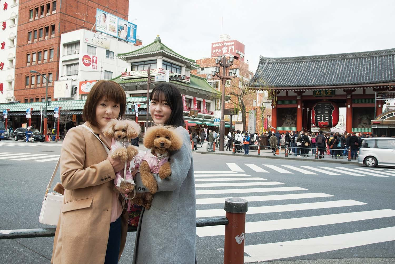 世界的な大人気観光スポットをわんちゃんと! 老舗の伝統と最新グルメを楽しむ欲張り散歩(浅草)