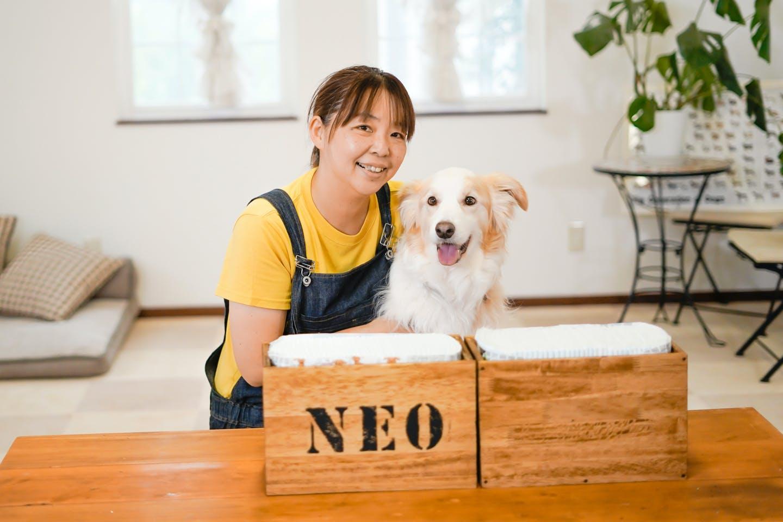 愛犬と簡単DIY「ペットシーツボックス」を作ろう!