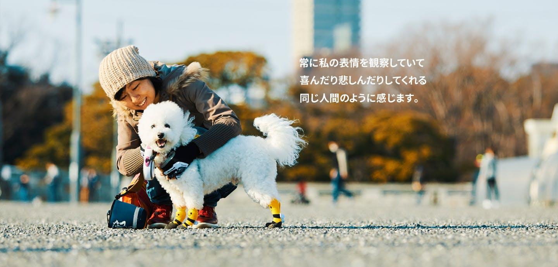 渋谷MC & フレディー