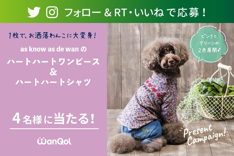 【プレゼントキャンペーン】Twitter or Instagramで as know as de wanのお洋服をゲットしよう!