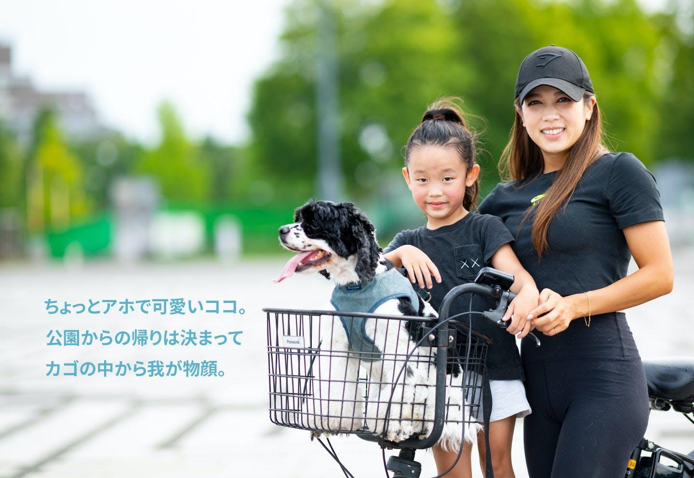 愛犬家の一日《WanScene96》安島さん&ココ(アメリカン・コッカー・スパニエル)