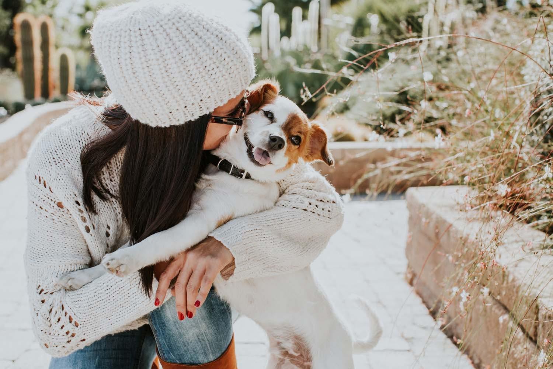 外出自粛の影響でペットを迎える人が急増中!?今だから知っておきたい「犬を飼う」ことの重みとは?