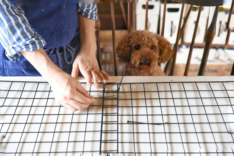 ペット用ゲートをDIY フェンスを固定