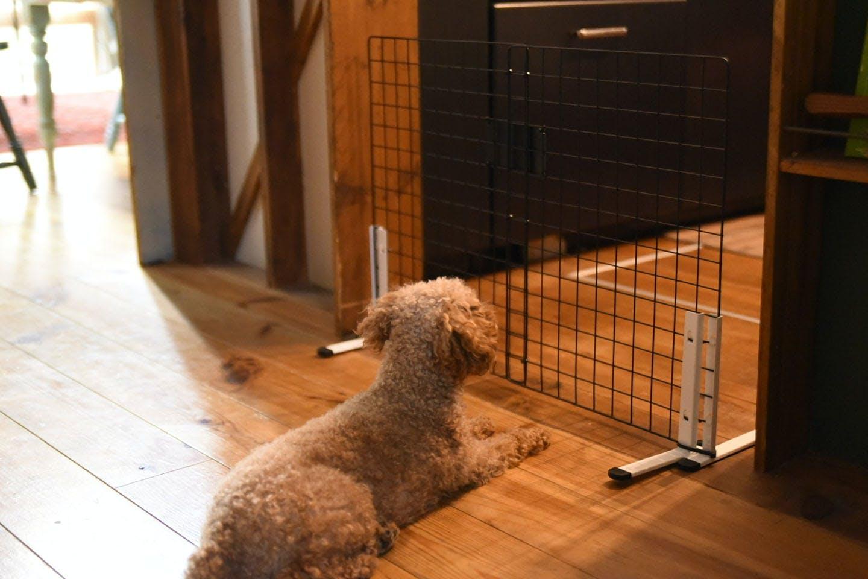 ペット用ゲートをDIY 完成品を設置