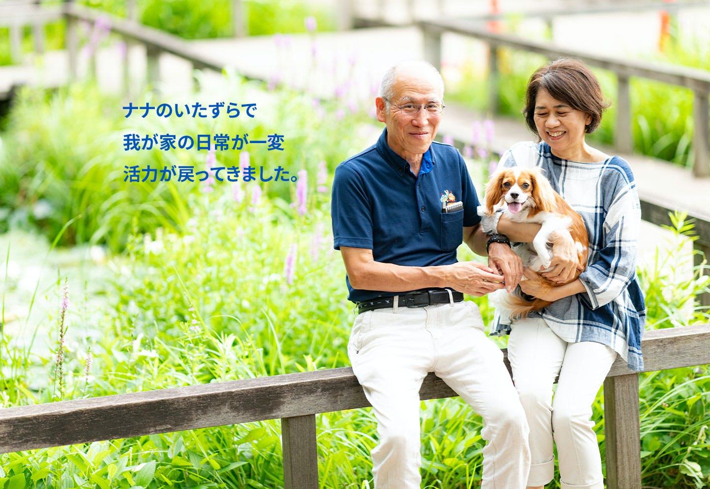 愛犬家の一日《WanScene91》 守谷さん&ナナ(キャバリア)