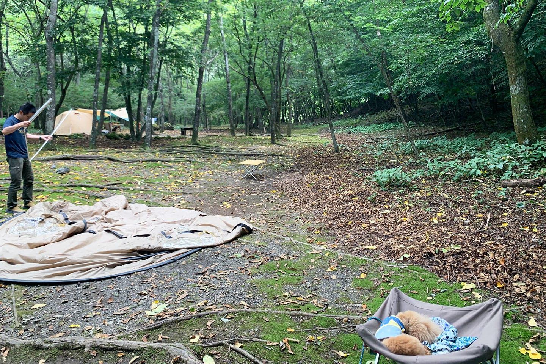 キャンプの設営
