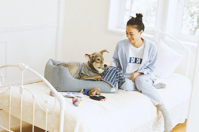 愛犬とリンクコーデでオシャレしよう! 部屋着でリラックス SLEEPY JONES fab dog  カインズ MANDARINE BROTHERS