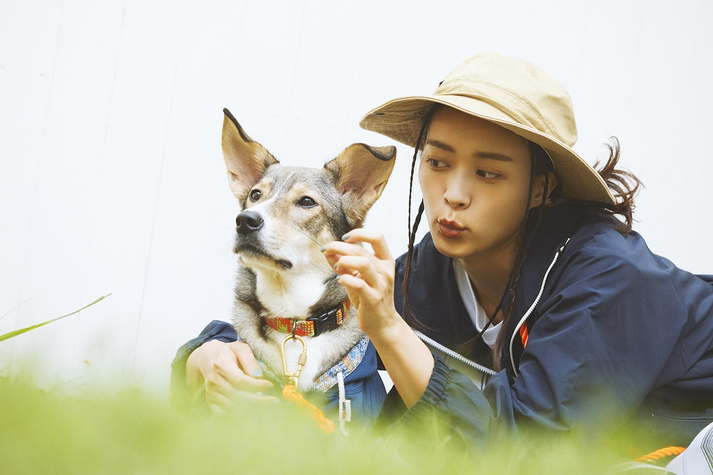 愛犬とリンクコーデ キャンプ アウトドア モデル大社カレン 保護犬