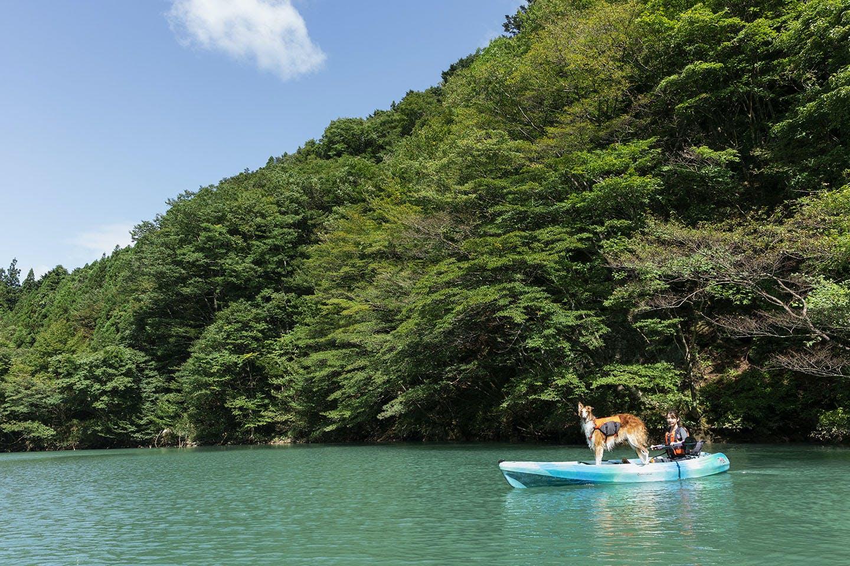 【那須】紅葉シーズンにオススメ!この秋の週末は愛犬と関東近郊に出かけて遊ぼう♪