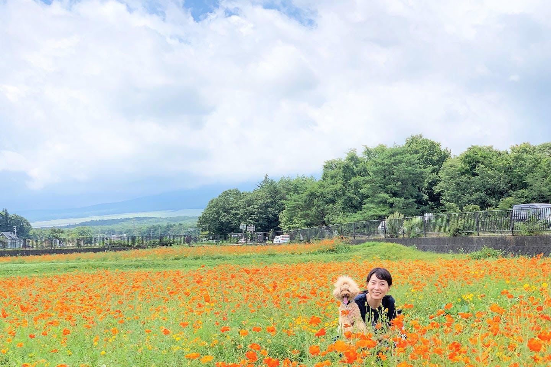 お花とネネちゃんと飼い主さん