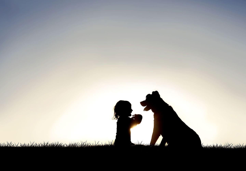 犬と赤ちゃんのシルエット