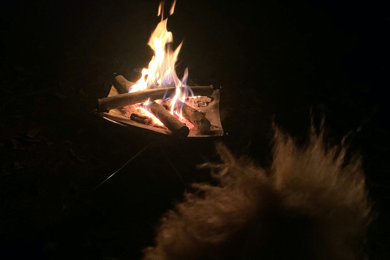 焚き火を見るネネ