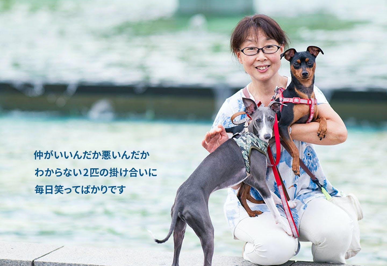 愛犬家の一日《WanScene101》高野さん&菊千代(ミニピン)・ひなた(イタグレ)