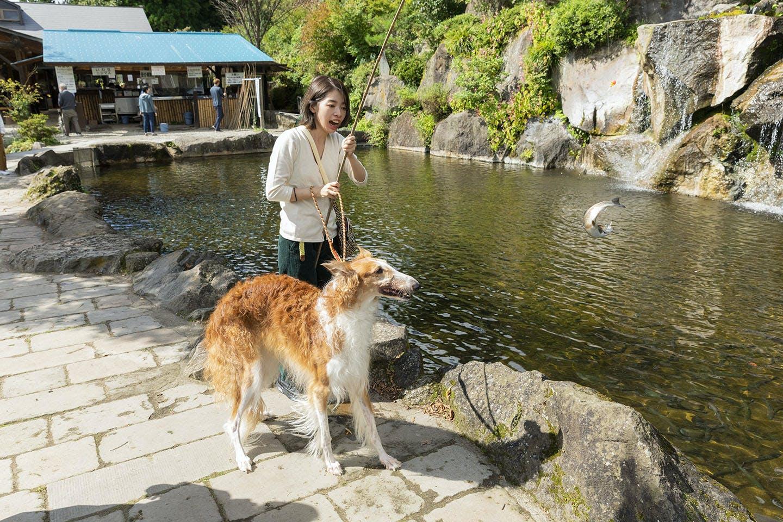 【那須】犬OKの釣り堀!ランチタイムだって楽しさいっぱい♪《WanQol編集部レポ》