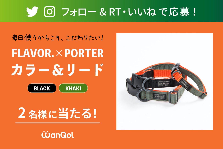 【プレゼントキャンペーン】Twitter or Instagramで FLAVOR.×PORTERのカラー&リードをゲットしよう!