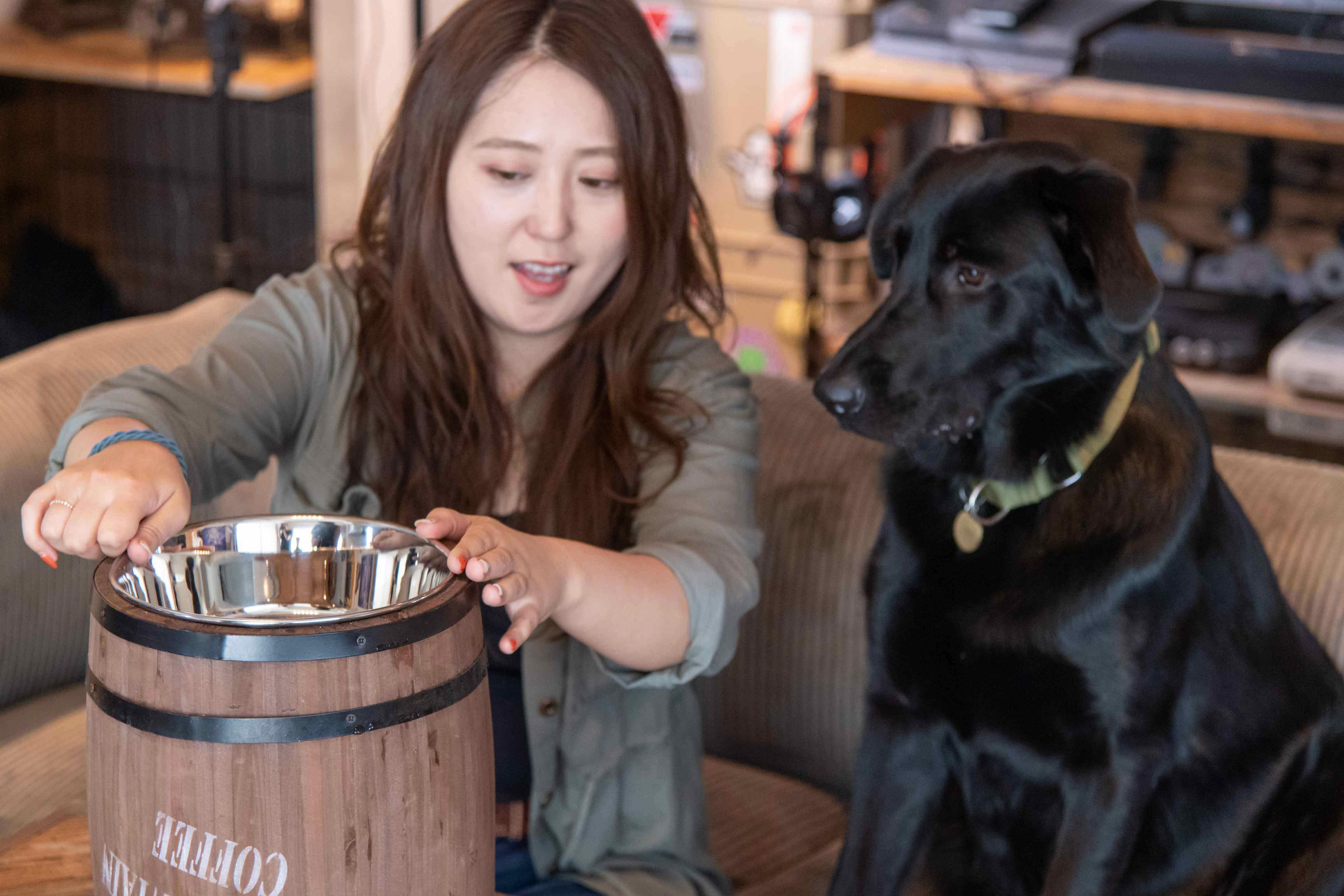 大型犬用DIY フードスタンド 酒樽