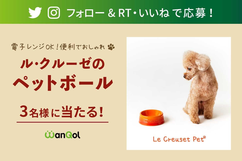 【プレゼントキャンペーン】Twitter or Instagramで ル・クルーゼのペットボールをゲットしよう!