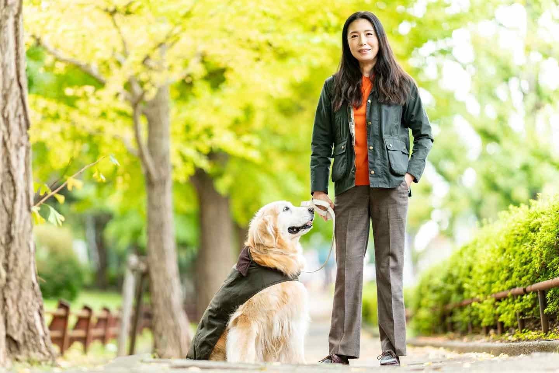 WanScene 女優高橋ひとみ 愛犬 ゴールデンレトリーバー