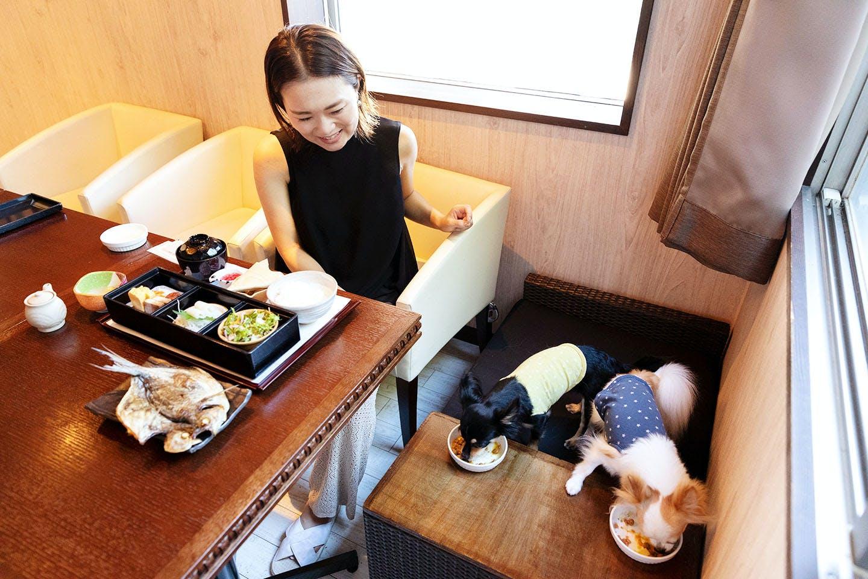 愛犬お宿の朝食