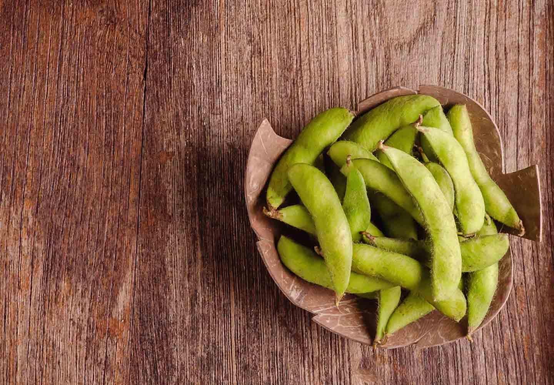 犬は枝豆を食べても大丈夫!与える際の注意点や適量、健康面でのメリットについて解説【獣医師監修】