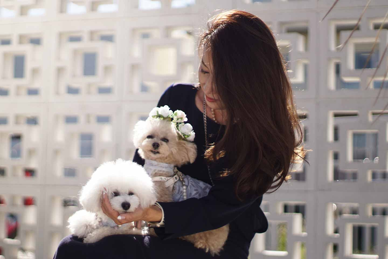 【横浜】愛犬とのんびり公園・ランチ・お花を楽しめるスポットをご紹介!