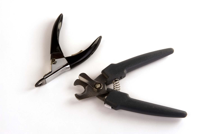犬用の爪切り道具