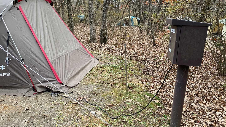 キャンプのドッグウェア