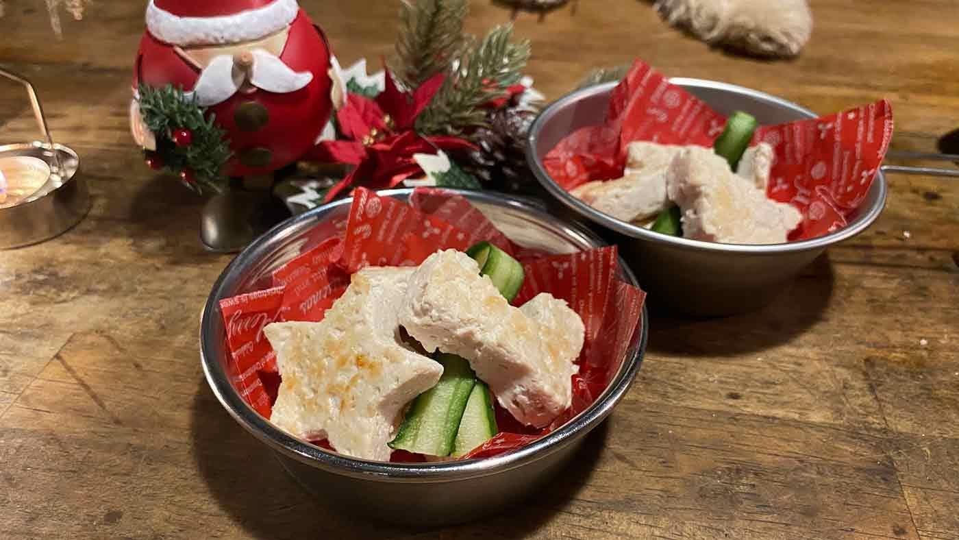 愛犬とクリスマスキャンプ 犬用クリスマスディナー
