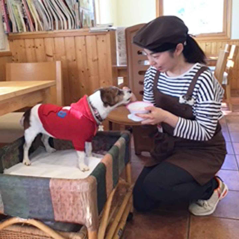 カフェ・ピーチェの店員と犬