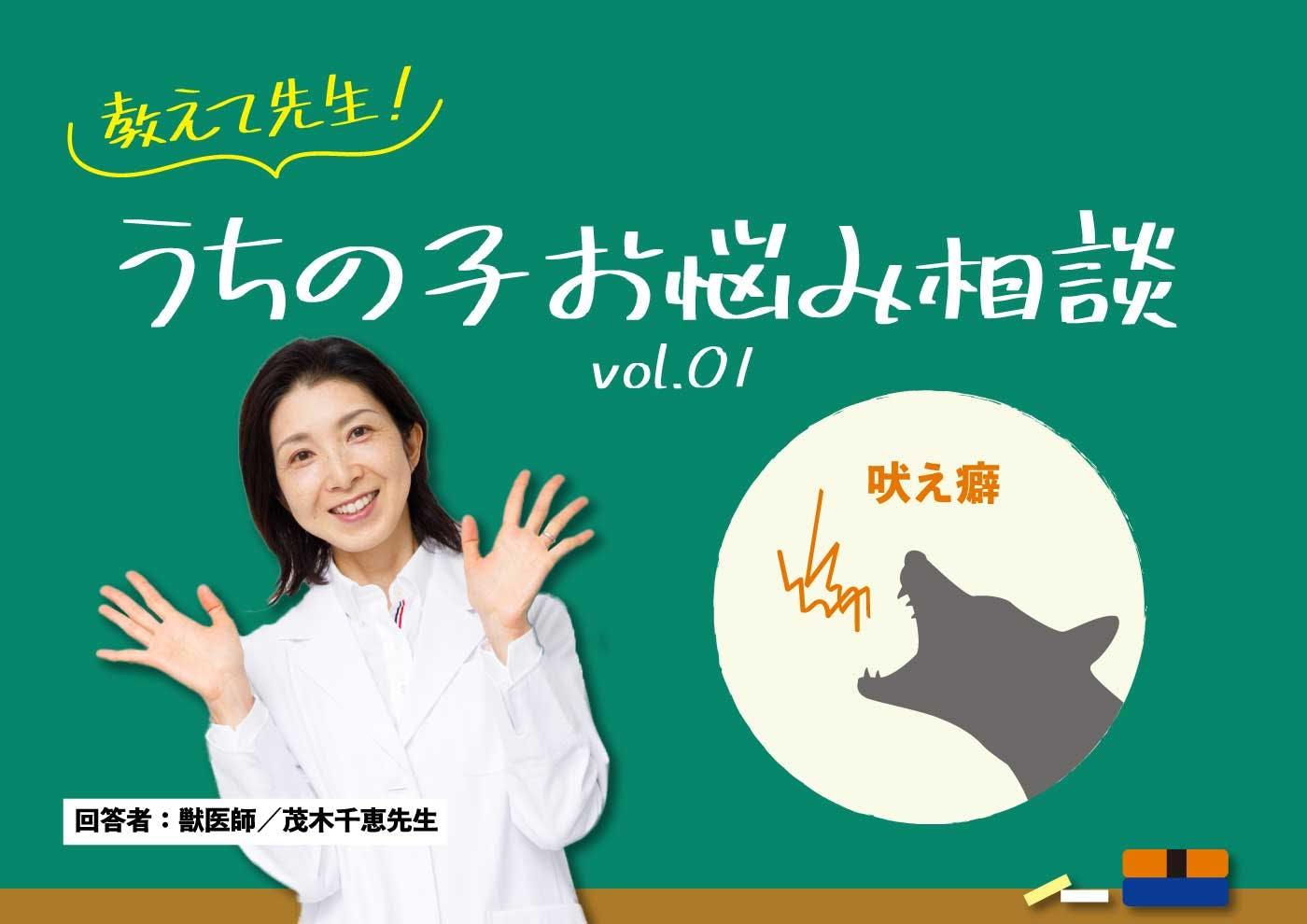教えて先生!うちの子お悩み相談 vol.1【吠え癖】