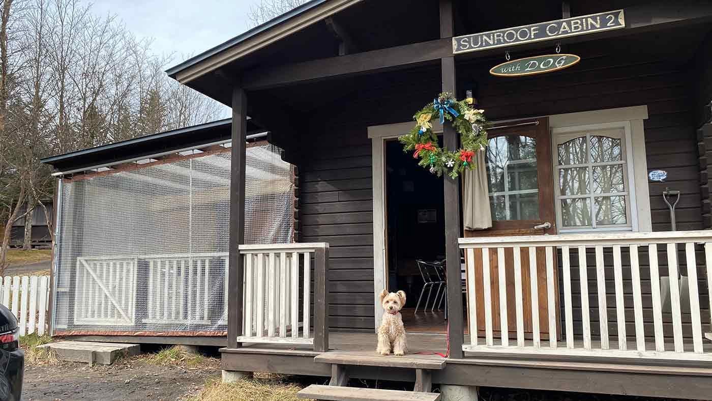 愛犬とクリスマスキャンプ クリスマスキャビン