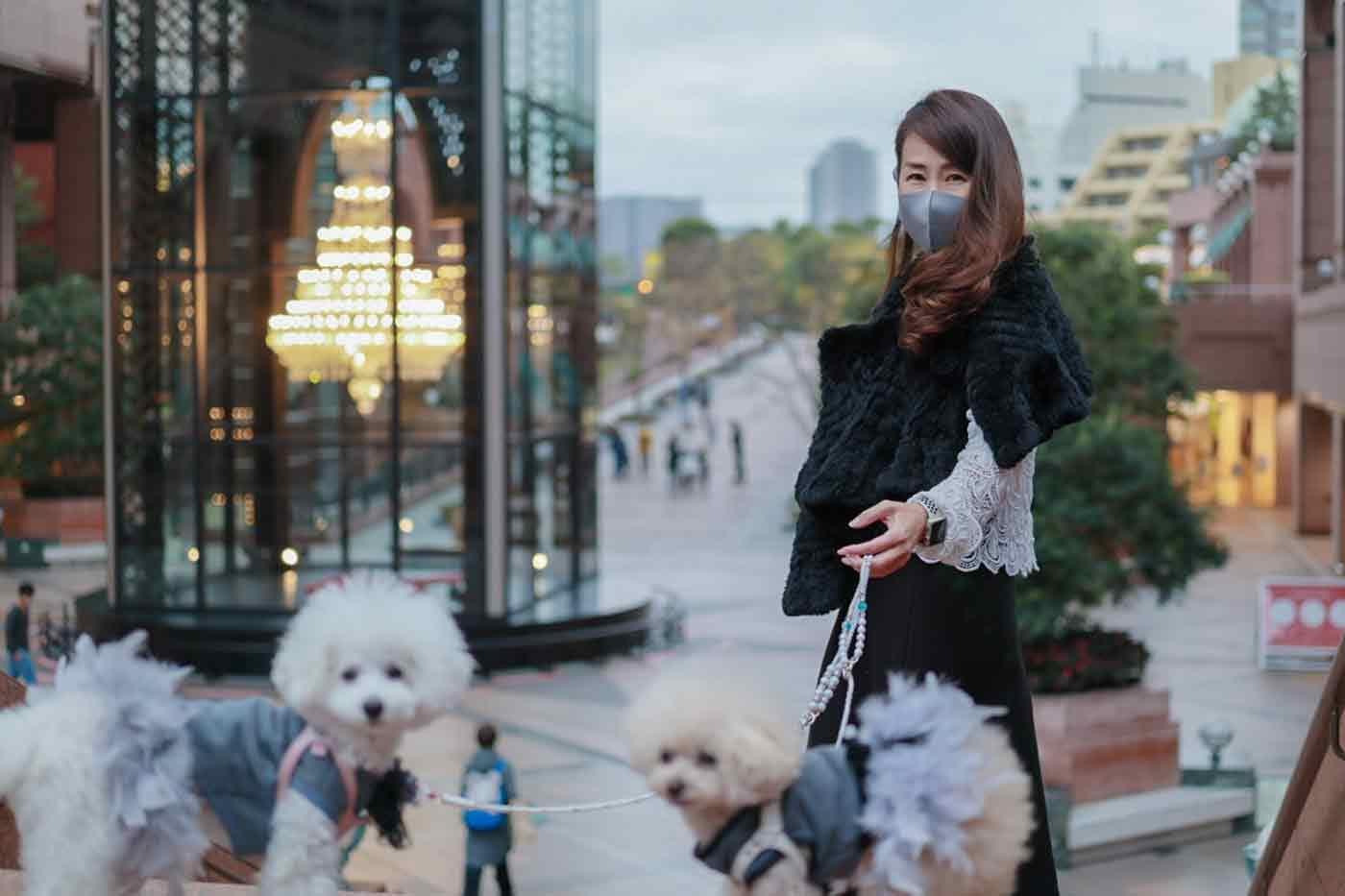 恵比寿で愛犬と散歩