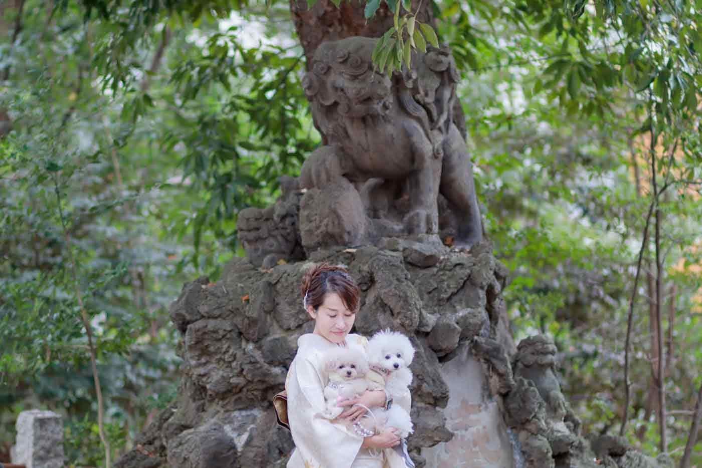 大木の前で記念撮影する犬と飼い主