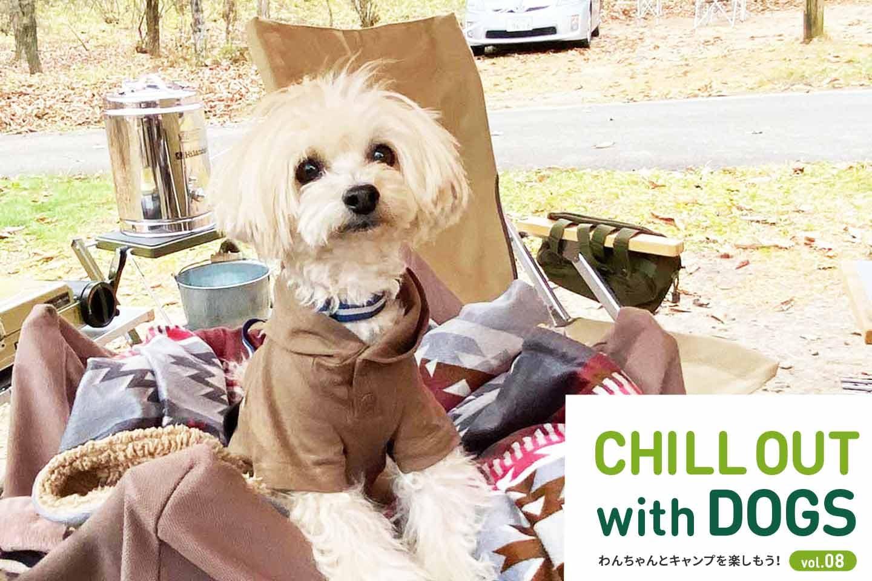 【榛名湖】ドッグキャンパーの先輩が教える!愛犬と冬の星空を眺めるためのキャンプの防寒術