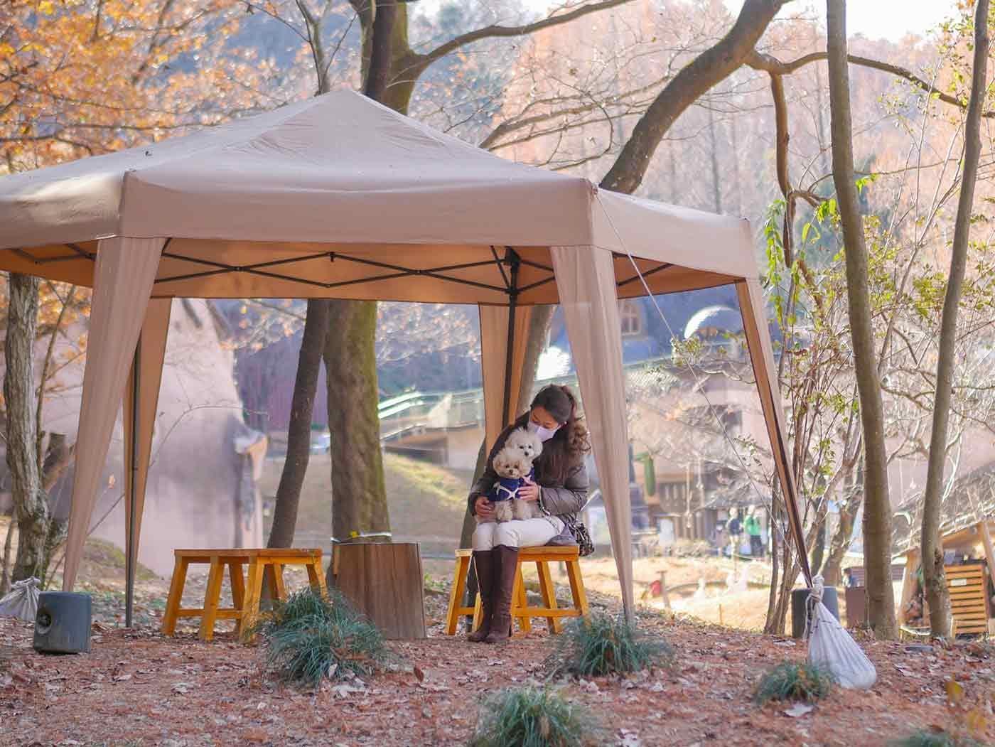 テントで休む