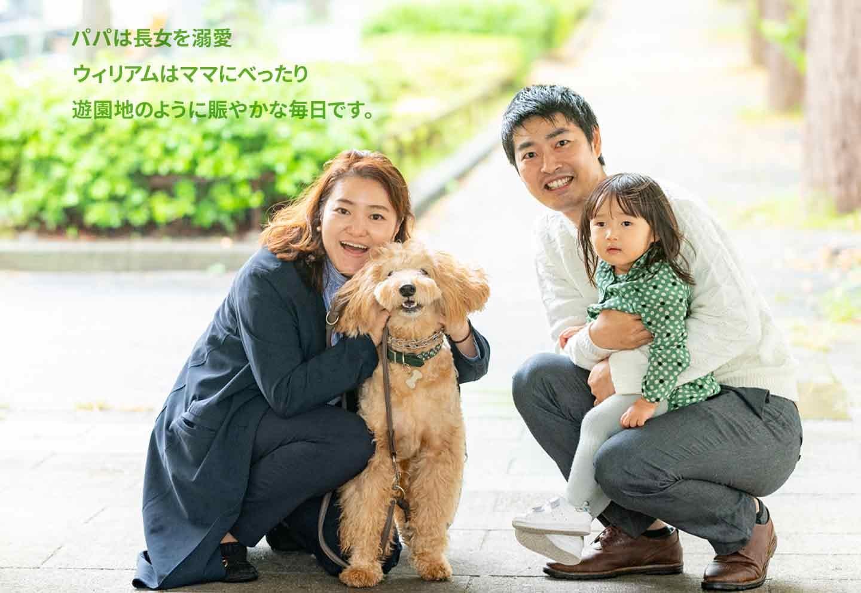 愛犬家の一日《WanScene108》寺島さん&ウィリアム(ゴールデンドゥードル)