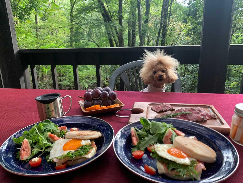 朝食とネネちゃん