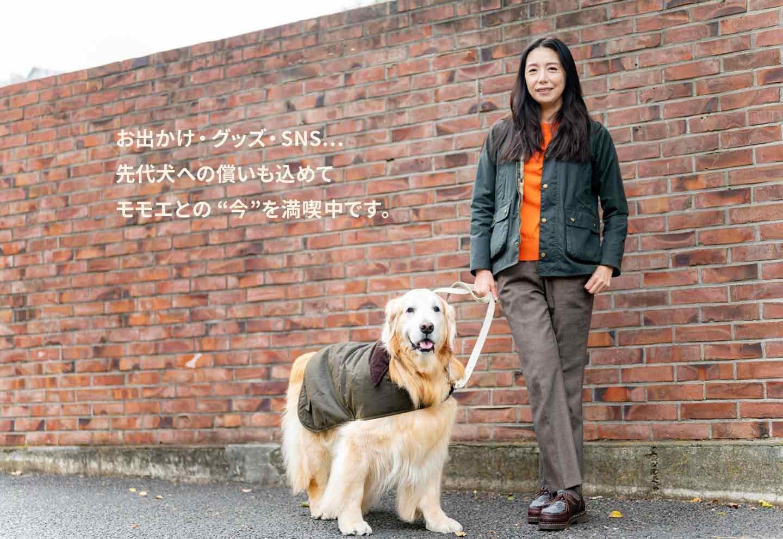 【犬OKスポット情報】高橋ひとみさん家族と愛犬のほっこり話《WanSceneスペシャル》