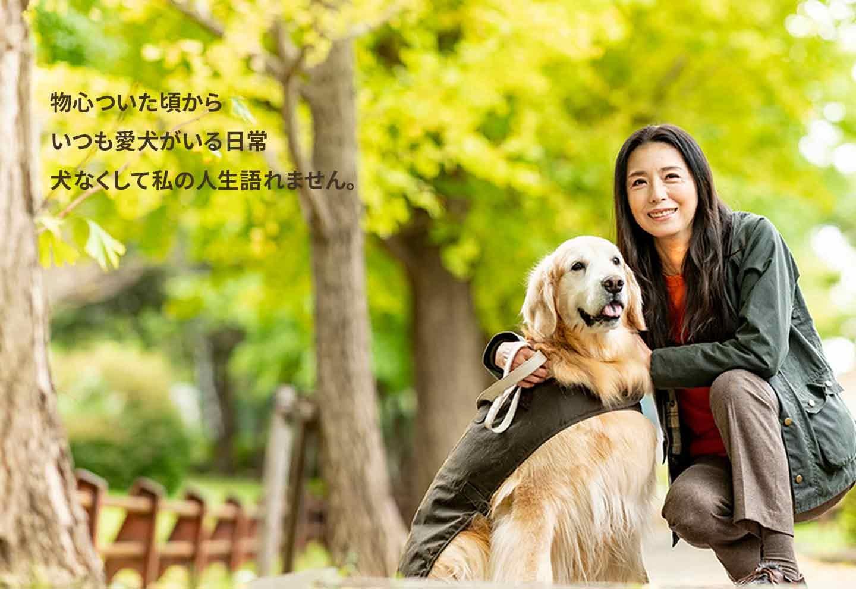 【愛犬とのほっこり話】女優・高橋ひとみさんと愛犬の絆《WanSceneスペシャル》