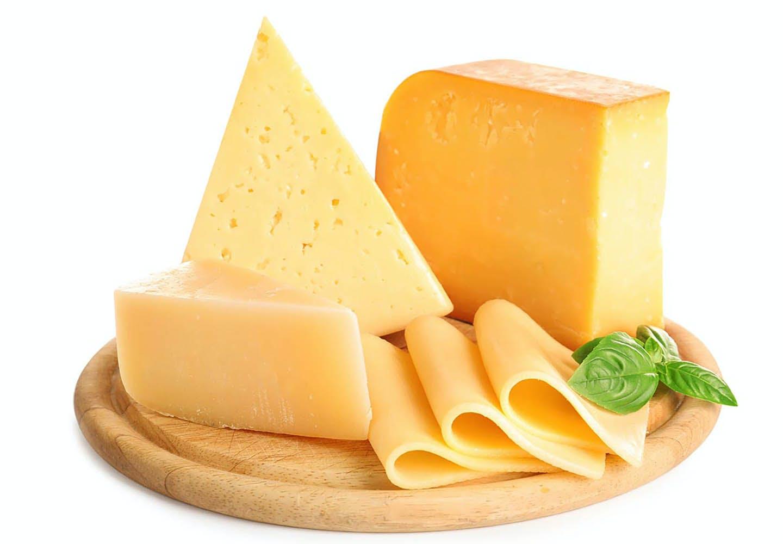 【獣医師監修】犬にチーズを食べさせても大丈夫?与える際の注意点や適切な量、健康面でのメリットについて解説
