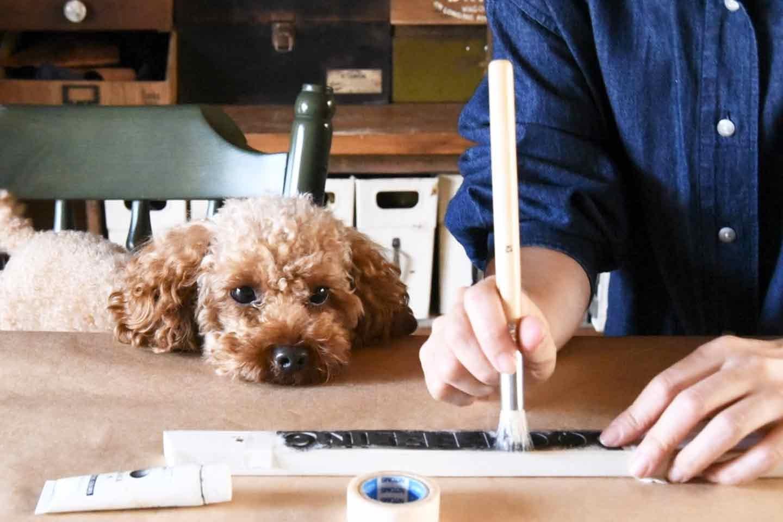 愛犬用ハンガーラック DIY ステンシル