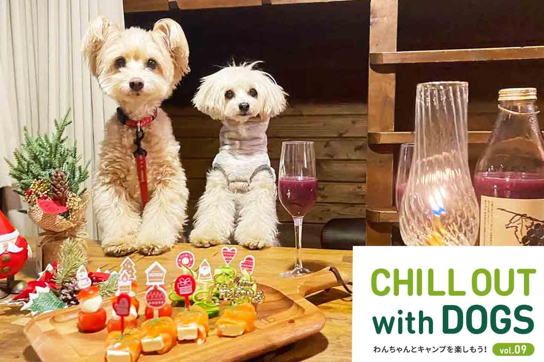 【北軽井沢】クリスマス直前!冬にオススメなキャンプ場で愛犬とのクリスマスの過ごし方を紹介!