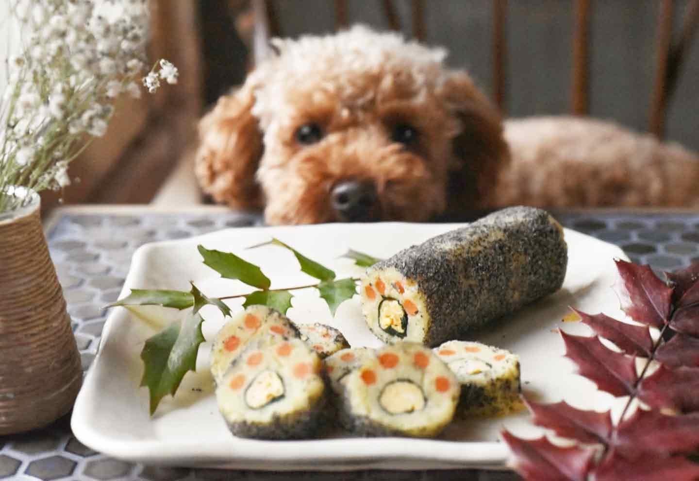 【愛犬と節分】安心食材だけで恵方巻!簡単なのに可愛い飾り巻き寿司の作り方♡