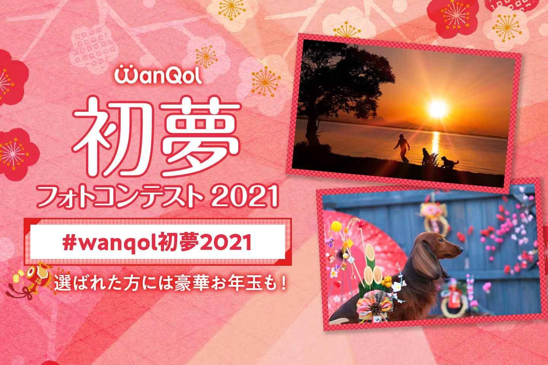 【豪華お年玉付き♪】 わんクォール 初夢フォトコンテスト2021開催!